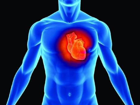 Bệnh tim và cách chữa trị và các ca tử vong do bệnh tim