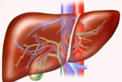 Bệnh viêm gan virus B nếu không được phát hiện và điều trị