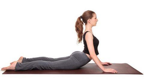 5 tư thế yoga chữa đau lưng gai đôi cột sống hiệu quả