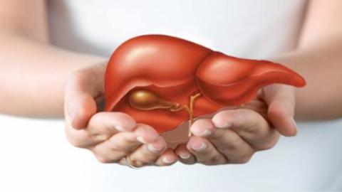 Hỏi đáp về cách chăm sóc và bảo vệ gan