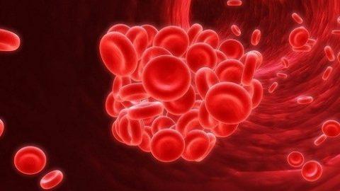 Nguyên nhân gây thiếu máu