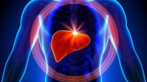 Làm thế nào để bảo vệ gan? chức năng gan suy giảm