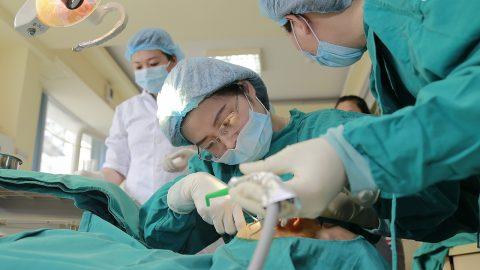Khám răng hàm mặt ngoài giờ tại Bệnh viện Thu Cúc