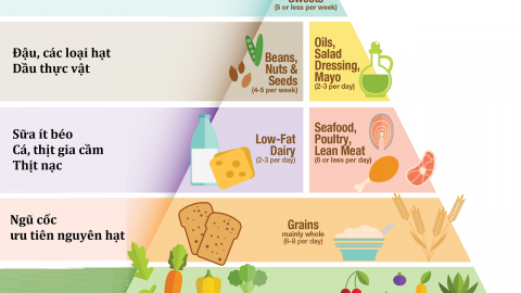 Tháp dinh dưỡng cho trẻ em bổ sung ngoài sữa mẹ
