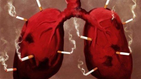 Thuốc lá và các bệnh về hô hấp