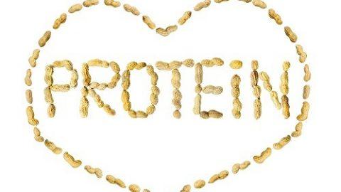 Những điều có thể bạn chưa biết về protein
