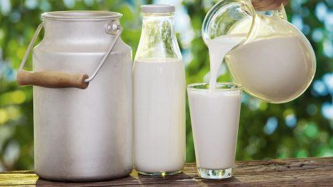 Đau dạ dày có nên uống sữa không?