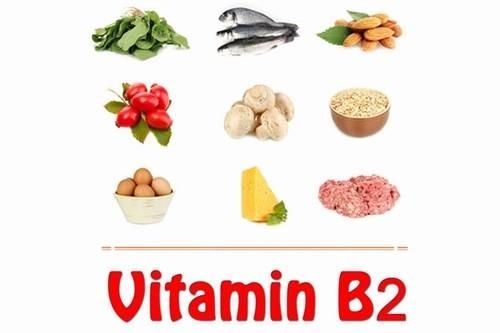Vitamin B12 tốt giúp bổ sung hồng cầu trong máu