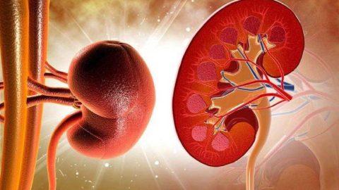 Suy thận giai đoạn 3 sống được bao lâu? Điều trị ra sao?