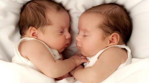 Đỡ đẻ từ sinh đôi trở lên chăm sóc, hồi sức, vào kiến thức