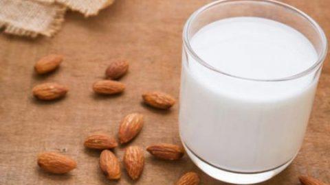 Sữa cho người ung thư: nên hay không?