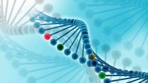 Bệnh ung thư gan có di truyền không?
