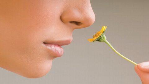 Biểu hiện của bệnh polyp mũi là gì?