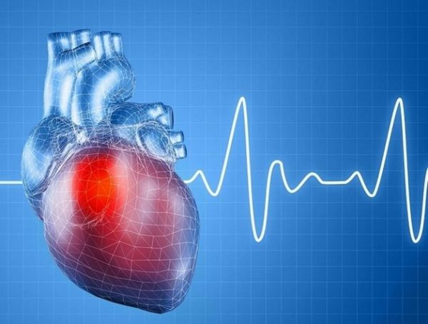 nhịp tim của người bình thường là bao nhiêu