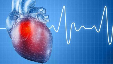 Bạn có biết nhịp tim của người bình thường là bao nhiêu