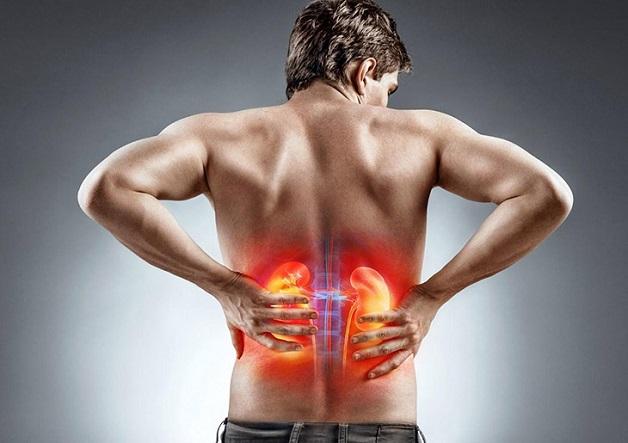 Chỉ số ure trong máu cao, thận hoạt động kém và dễ gặp phải các thương tổn