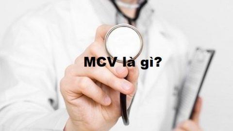 MCV là gì? Chỉ số xét nghiệm máu MCV bất thường