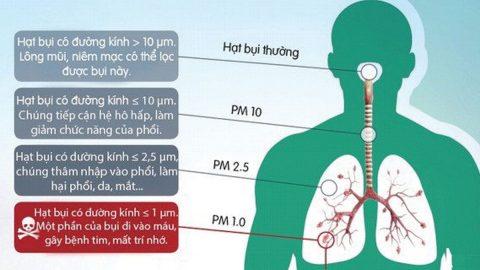 Sự nguy hại của không khí ô nhiễm và cách bảo vệ hệ hô hấp
