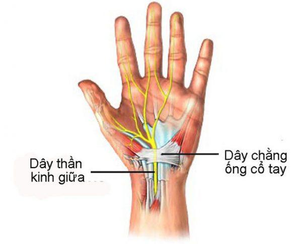 Nhiều người thắc mắc tê mỏi chân tay là biểu hiện của bệnh gì
