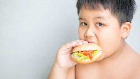 Béo phì ở trẻ em: nguyên nhân, tác hại và cách điều chỉnh