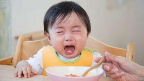 Chuyên gia lý giải: Bé lười ăn nên bổ sung những chất gì?