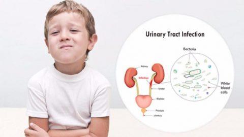 Nhiễm trùng đường tiểu ở trẻ em có nguy hiểm không?