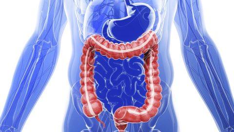 10 bệnh lý tiêu hóa thường gặp bạn cần biết