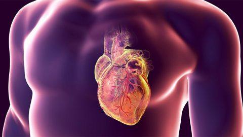 Bệnh mạch vành cấp: Triệu chứng, chẩn đoán và điều trị