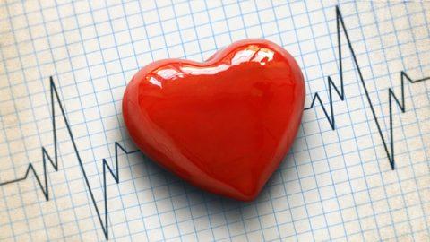 Cầu cơ động mạch vành: dị tật tim bẩm sinh hiếm gặp