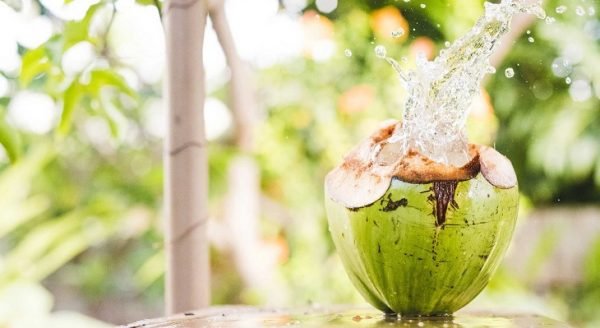 Bạn nên sử dụng 3-4 quả dừa/ tuần để mang lại kết quả tích cực nhất