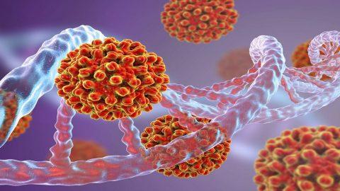 Người nhiễm virus viêm gan B sống được bao lâu?