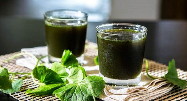 Trong rau má chứa nhiều beta caroten, saponins, các loại vitamin nhóm B có khả năng tăng tốc độ chữa lành tổn thương lợi, nướu, hỗ trợ chữa nhiệt miệng cực nhanh chóng.