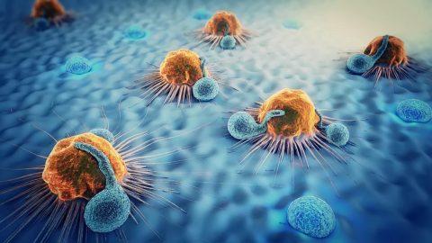Tầm soát ung thư là gì? Bạn đã thực sự hiểu đúng?