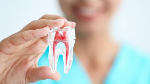 Điều trị bệnh lý về tủy răng