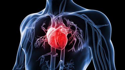 Những biểu hiện của bệnh mạch vành bạn cần biết