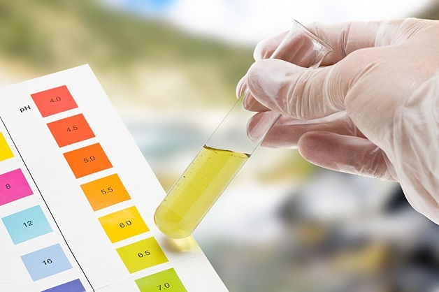 xét nghiệm protein như thế nào