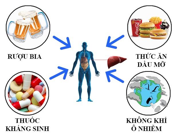 Thói quen sinh hoạt không lành mạnh có thể gây ra gan nhiễm mỡ độ 3