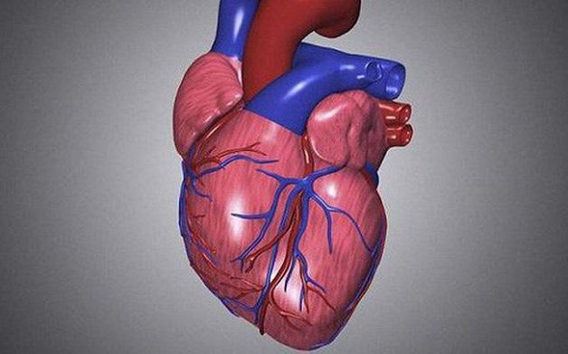 Hẹp van tim xảy ra khi van tim dày lên và cứng