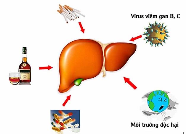 Đường máu là con đường lây nhiễm viêm gan C chủ yếu