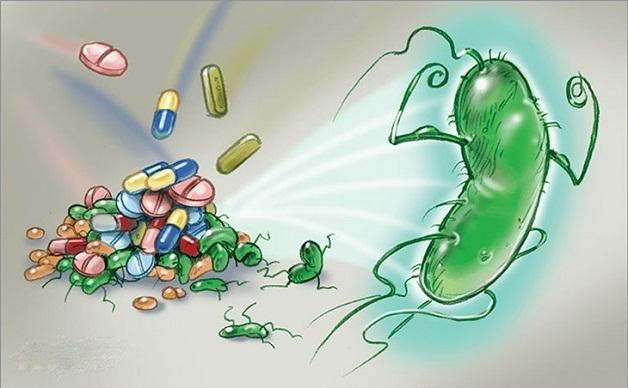 Thuốc Tây y giúp diệt vi khuẩn Hp trong dạ dày