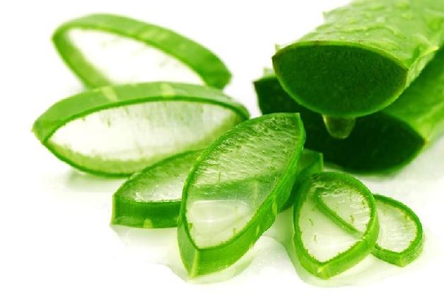 Các bạn nên dùng gel nha đam để làm giảm đau nướu tạm thời