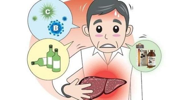 Tăng men gan là hậu quả của việc các tế bào gan bị tổn thương