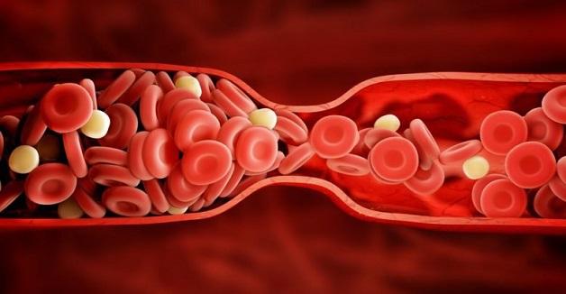 xét nghiệmđông máu như thế nào