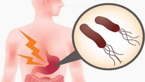 Vi khuẩn Hp gây ra bệnh gì? Có nguy hiểm không?