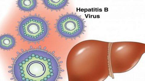 Viêm gan B cấp và những điều cần lưu ý