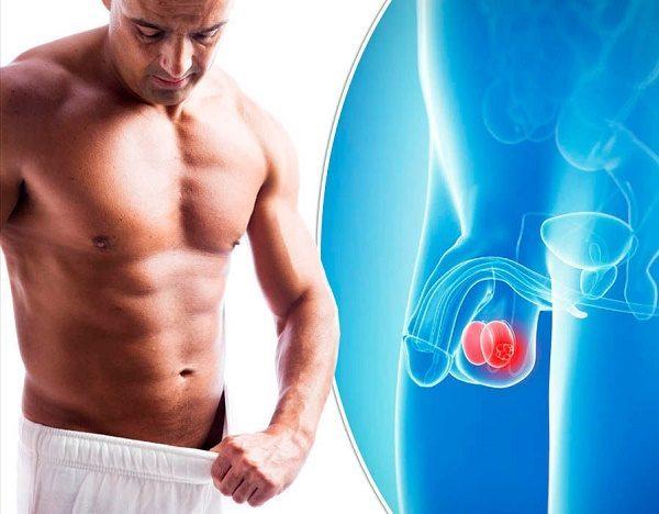 Ung thư tình hoàn phổ biến ở nam giới 25 - 29 tuổi