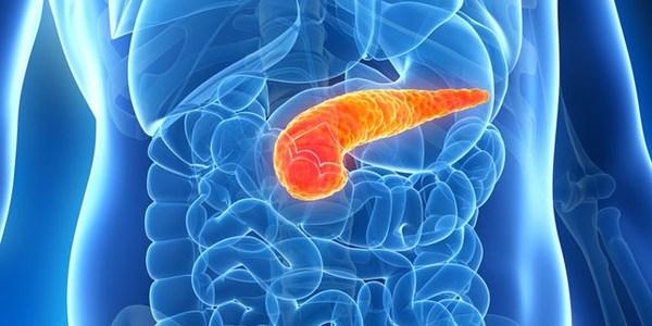 Ung thư tuyến tụy là bệnh ung thư đặc biệt nguy hiểm, tỷ lệ tử vong cao