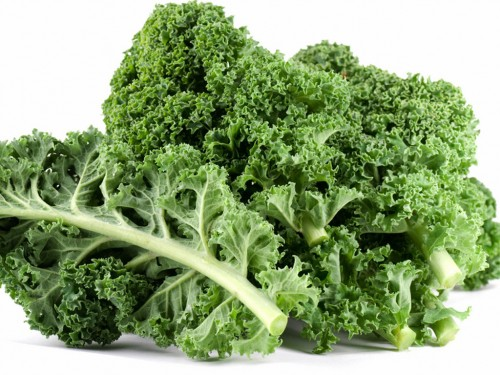 Thực tế, cải xoăn chứa nhiều canxi hơn so với sữa và cũng dễ hấp thu hơn so. Giống như rau diếp, cải bắp, cải xoăn… chứa nhiều vitamin K - là yếu tố hình thành của osteocalcin, giúp tích tụ canxi vào trong xương.