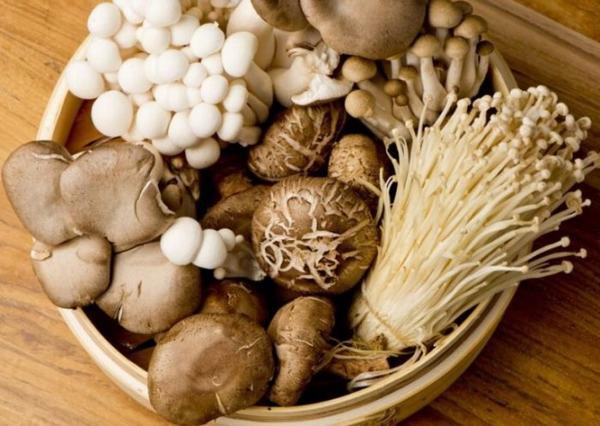 Các loại nấm cũng rất có lợi cho cơ thể, bảo vệ khớp gối