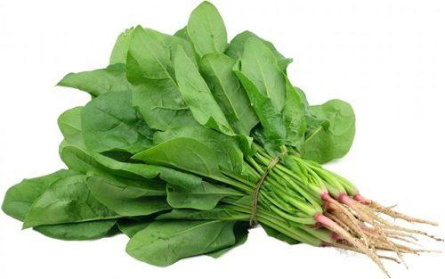 Rau chân vịt có tác dụng làm giảm nhanh các triệu chứng của bệnh táo bón.